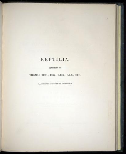 Image of Darwin-F8.3-1838-b00000-tp1