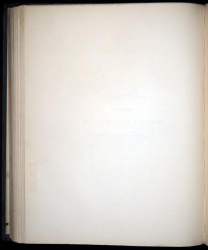 Image of Darwin-F8.3-1838-b00000-tp1v