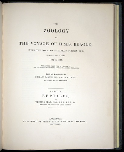 Image of Darwin-F8.3-1838-b00000-tp2
