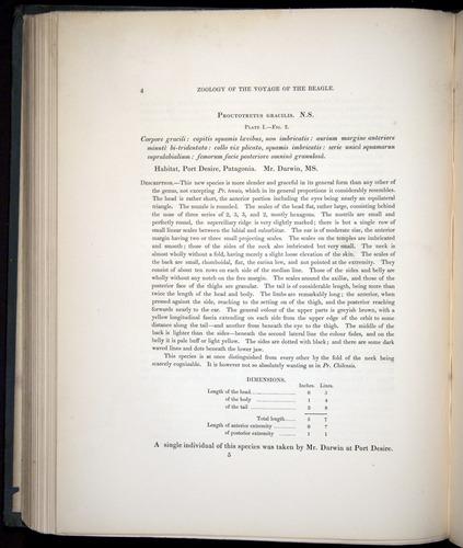 Image of Darwin-F8.3-1838-b00004