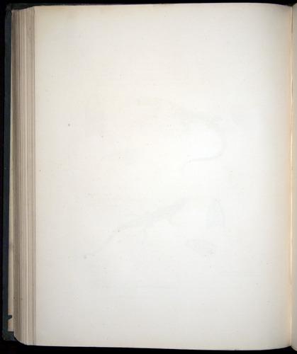 Image of Darwin-F8.3-1838-b00006-zfo3