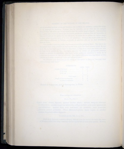 Image of Darwin-F8.3-1838-b00008-bf04