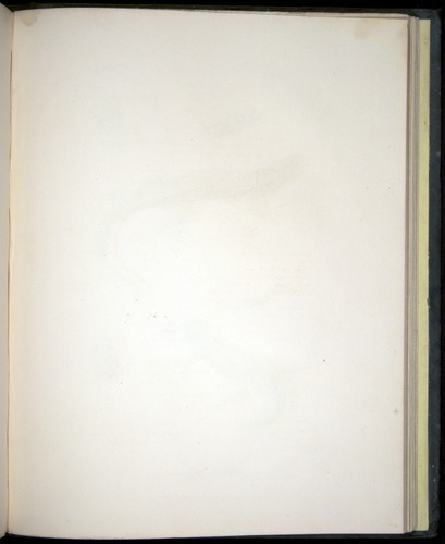 Image of Darwin-F8.3-1838-b00010-af05