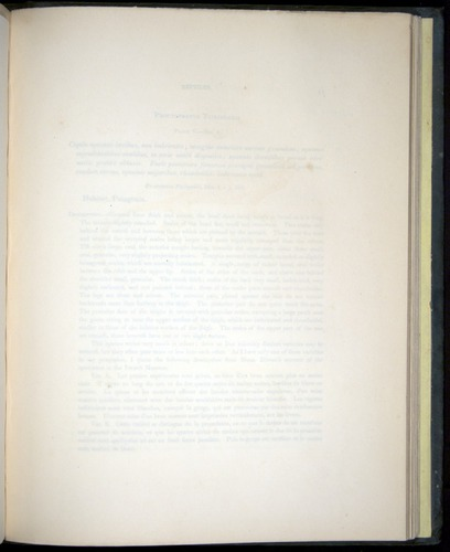 Image of Darwin-F8.3-1838-b00010-yf05
