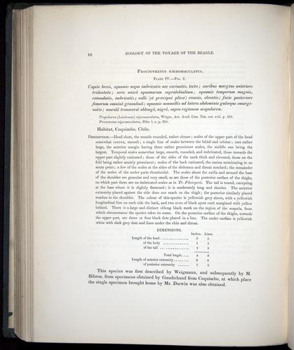 Image of Darwin-F8.3-1838-b00010