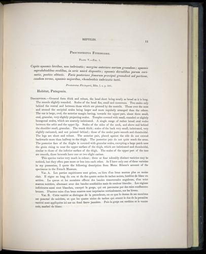 Image of Darwin-F8.3-1838-b00011