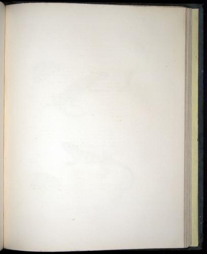Image of Darwin-F8.3-1838-b00016-af09