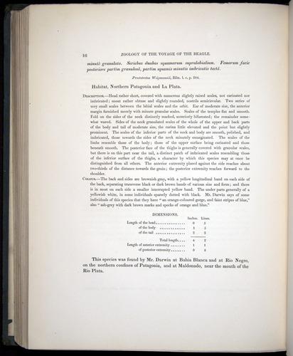 Image of Darwin-F8.3-1838-b00016