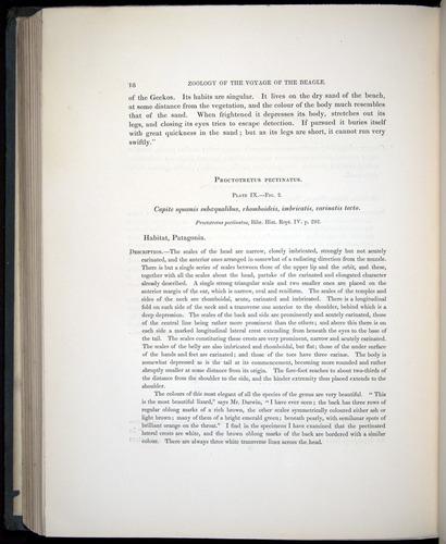 Image of Darwin-F8.3-1838-b00018