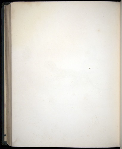 Image of Darwin-F8.3-1838-b00020-azf10