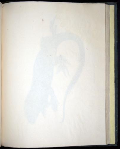 Image of Darwin-F8.3-1838-b00022-af12