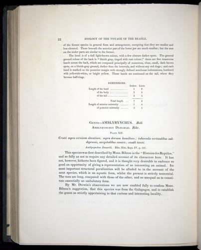 Image of Darwin-F8.3-1838-b00022