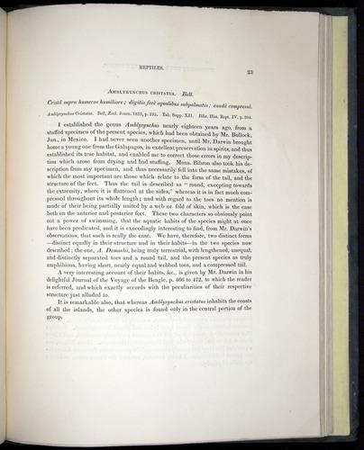 Image of Darwin-F8.3-1838-b00023