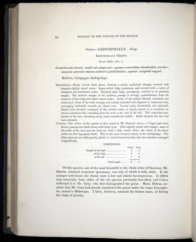 Image of Darwin-F8.3-1838-b00024