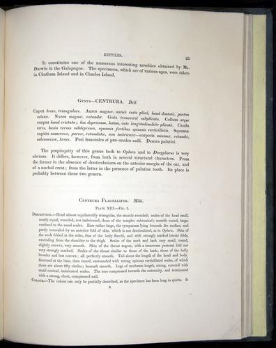 Image of Darwin-F8.3-1838-b00025