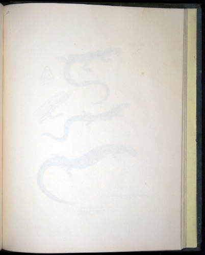 Image of Darwin-F8.3-1838-b00028-af15