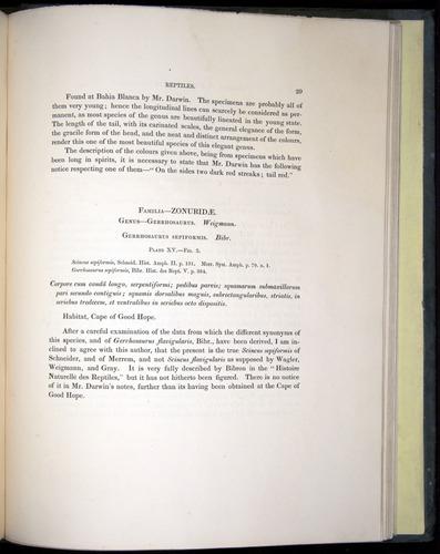 Image of Darwin-F8.3-1838-b00029