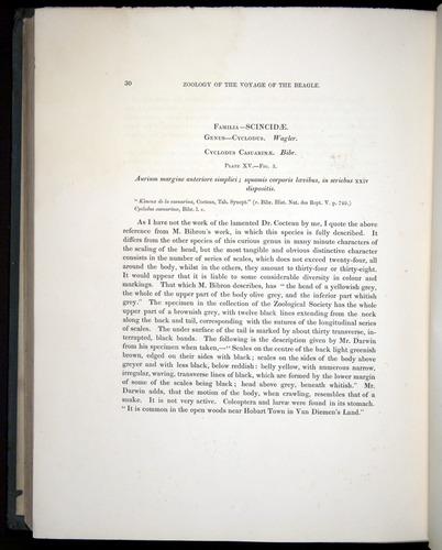Image of Darwin-F8.3-1838-b00030