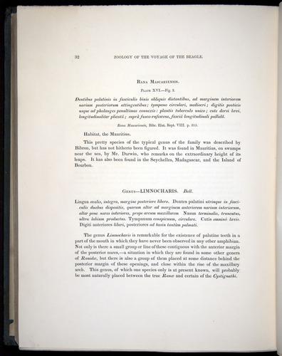 Image of Darwin-F8.3-1838-b00032