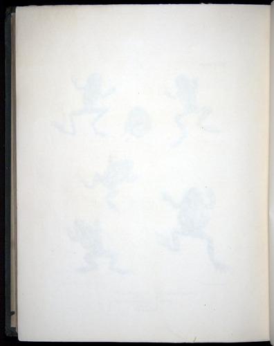 Image of Darwin-F8.3-1838-b00034-zf17