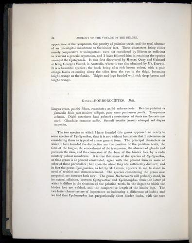 Image of Darwin-F8.3-1838-b00034