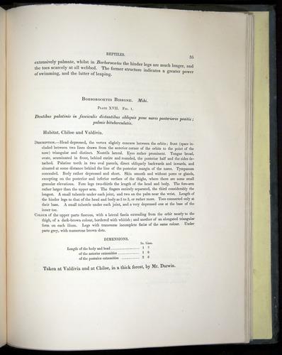 Image of Darwin-F8.3-1838-b00035