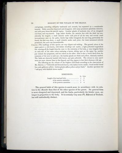 Image of Darwin-F8.3-1838-b00038