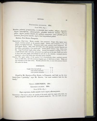 Image of Darwin-F8.3-1838-b00039