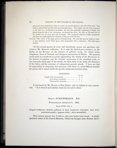 Image of Darwin-F8.3-1838-b00040
