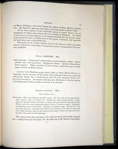 Image of Darwin-F8.3-1838-b00041
