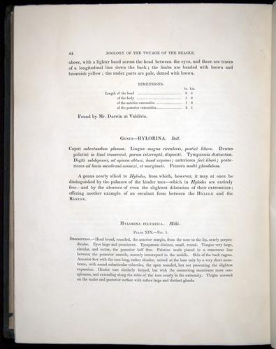 Image of Darwin-F8.3-1838-b00044