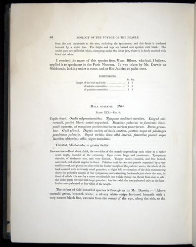 Image of Darwin-F8.3-1838-b00046
