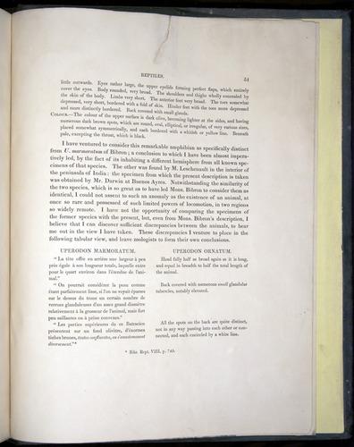 Image of Darwin-F8.3-1838-b00051