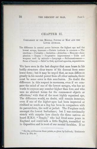 Image of Darwin-F937.1-1871-034