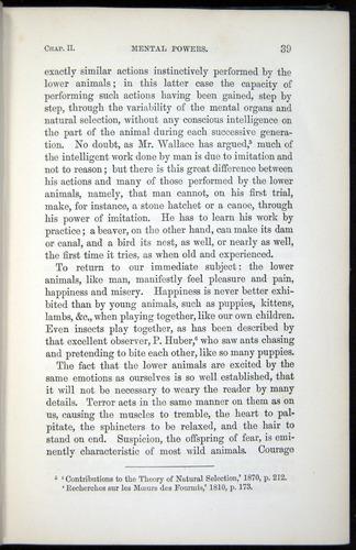 Image of Darwin-F937.1-1871-039