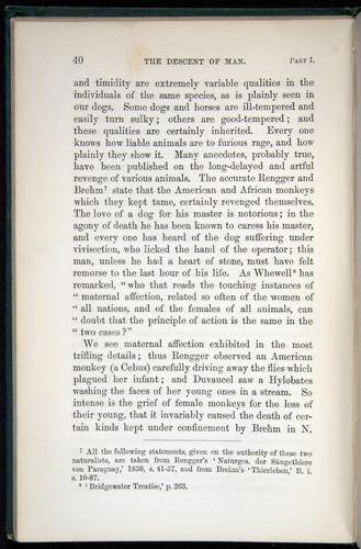 Image of Darwin-F937.1-1871-040