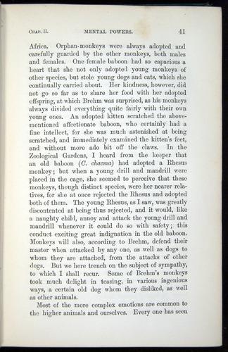 Image of Darwin-F937.1-1871-041