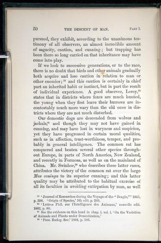 Image of Darwin-F937.1-1871-050