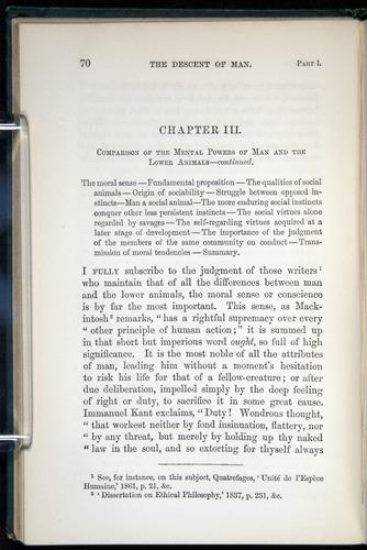 Image of Darwin-F937.1-1871-070