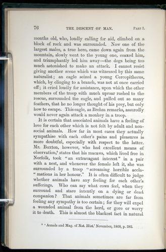 Image of Darwin-F937.1-1871-076