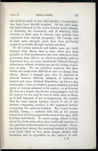 Image of Darwin-F937.1-1871-083