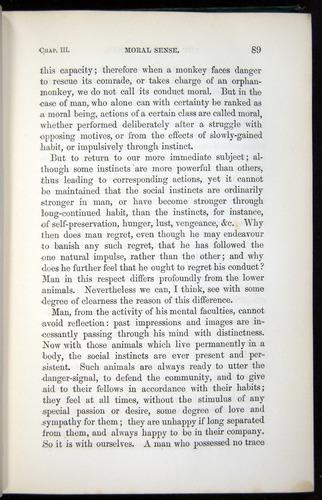 Image of Darwin-F937.1-1871-089