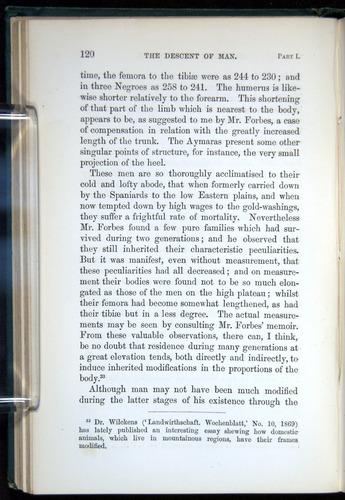 Image of Darwin-F937.1-1871-120