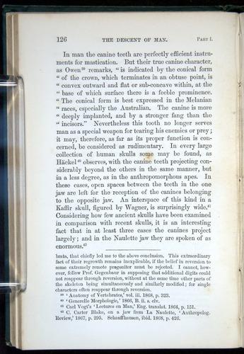 Image of Darwin-F937.1-1871-126