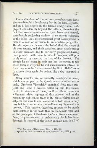Image of Darwin-F937.1-1871-127