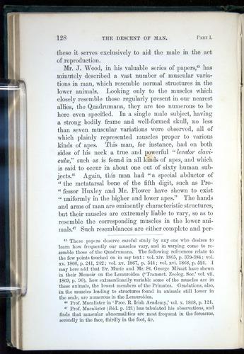 Image of Darwin-F937.1-1871-128