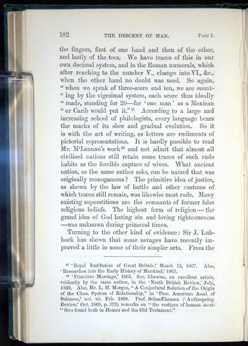 Image of Darwin-F937.1-1871-182