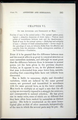 Image of Darwin-F937.1-1871-185
