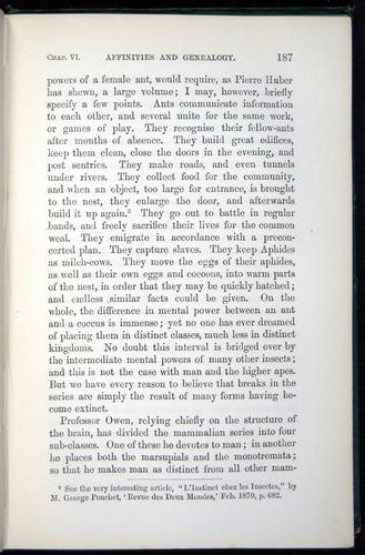 Image of Darwin-F937.1-1871-187