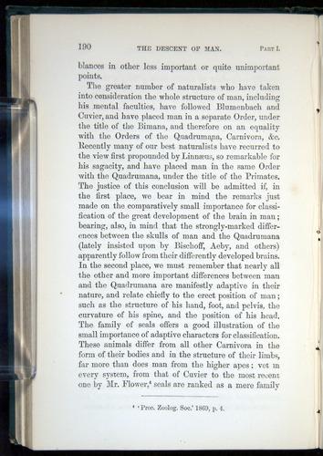 Image of Darwin-F937.1-1871-190